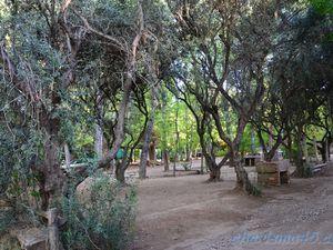 Mendoza, Argentine en camping-car