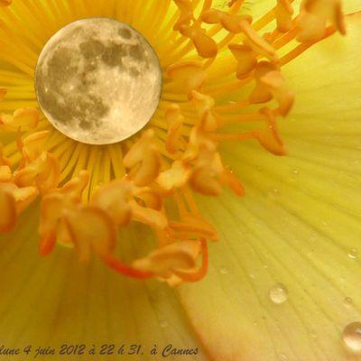 Les facéties de la pleine lune