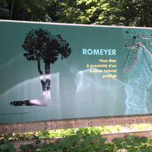 Die, Romeyer, route forestière du Château (104 km)
