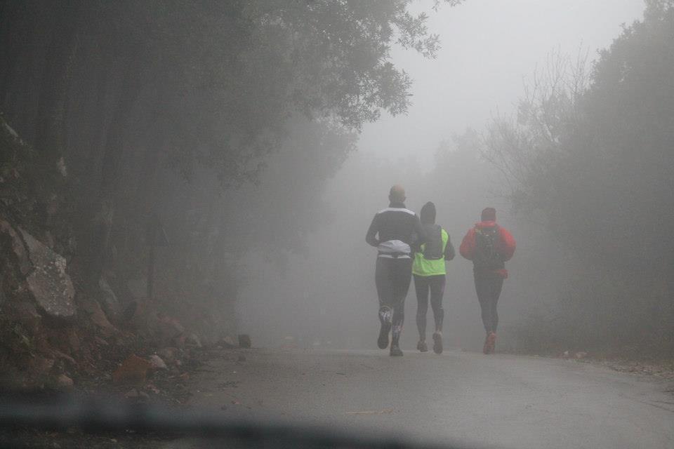 Vivi Natura Trail 2016 (8^ ed.). Si corre di nuovo tra i lecci del Parco delle Madonie