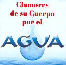 Free downloads of books Los Muchos Clamores de