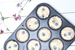 Muffins madeleines aux myrtilles