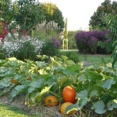 Le Jardin de Pomone : à voir samedi 2 et dimanche 3 juin 2012