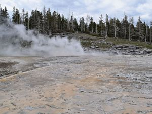 Du 19 au 22/05/16 : Yellowstone National Park
