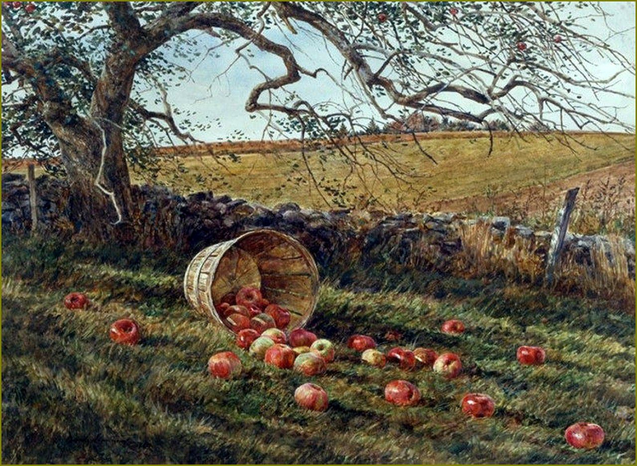 David Armstrong - pommes