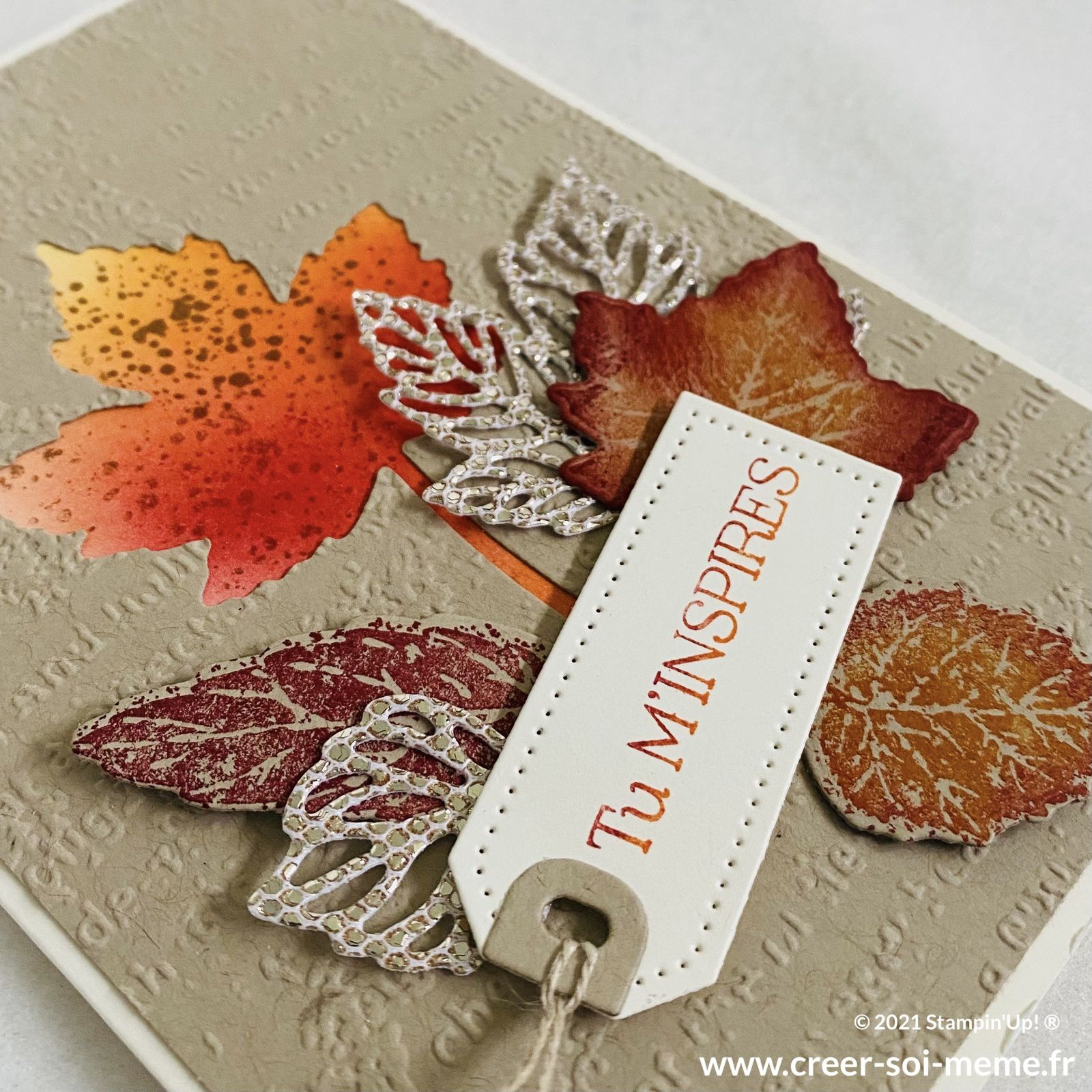 gorgeous leaves stampin up feuillage nature automne die découpes tampons loisirs créatifs automne sonia