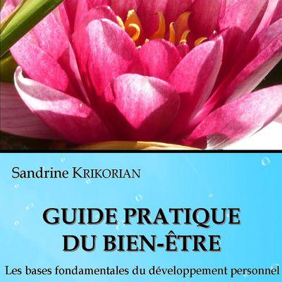 Livre : Guide pratique du bien-être. Les bases fondamentales du développement personnel.