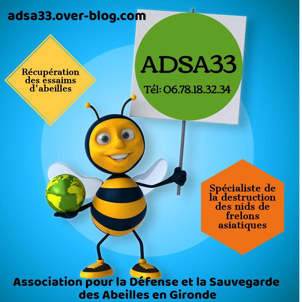 ADSA33 en partenariat avec les communes en gironde