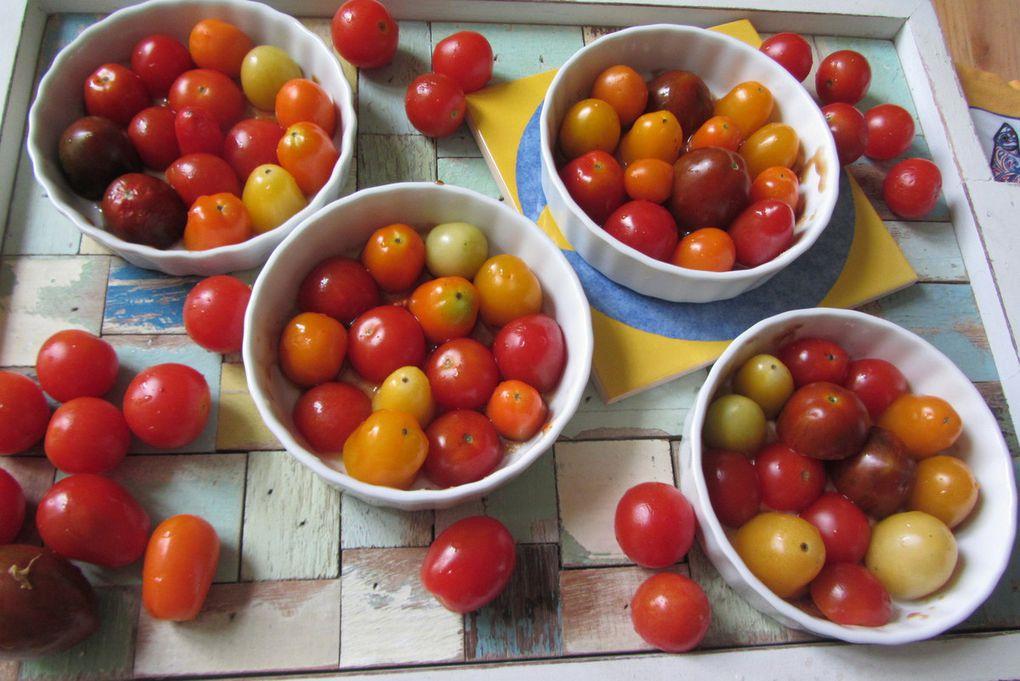 Tatins de tomates cerises au caramel balsamique