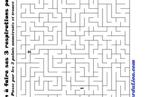 Le Labyrinthe de la colère (Annexe : Mes émotions) [Activité][Gaston la Licorne][GS-CP]