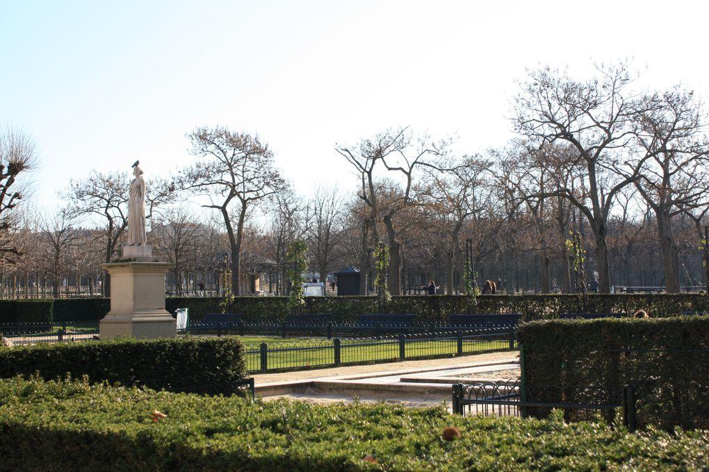 Promenade d'hiver dans le jardin du Luxembourg à Paris Photos: Emmanuel CRIVAT 2011