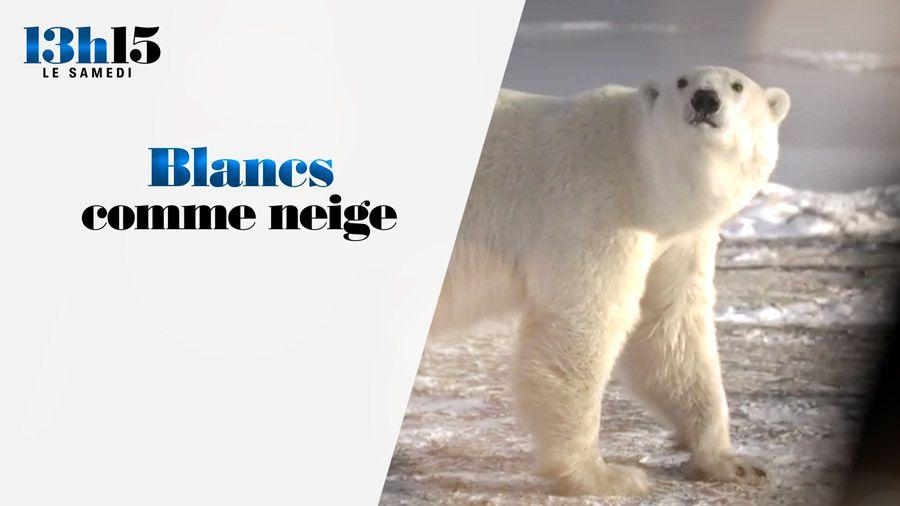 """Le document """"Blancs comme neige"""" à voir ou revoir dans """"13h15, le samedi"""" sur France 2"""