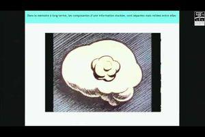 Planète conférences - Le cerveau pour allié en...