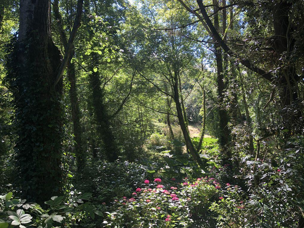 Randonnée, boucle autour du Cap de la Hague, 11,3 km.