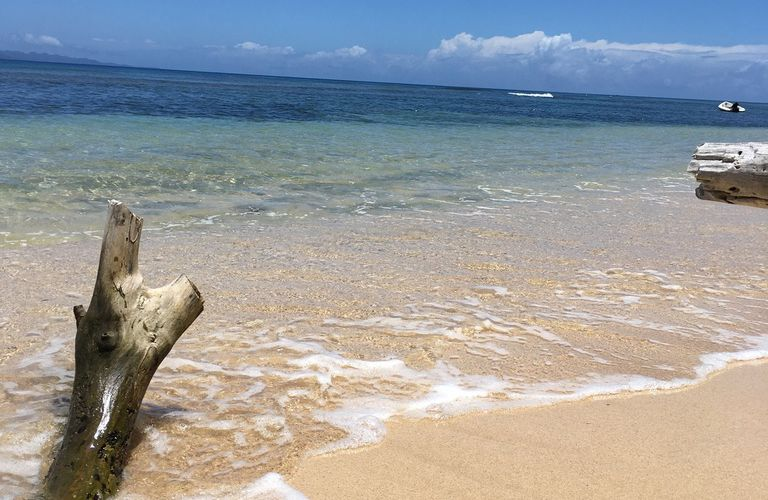 FIJI, île de TAVEUNI pendant 10 jours : Camping rustique type Robinson Crusoe, fin des 6 semaines de séjour tropical.