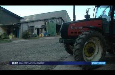 gueutteville