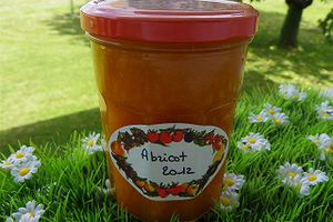 CONFITURE D'ABRICOT(thermomix)