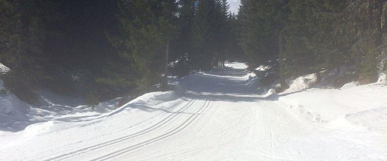 Sorties ski de fond pour les CE2 CM1 CM2