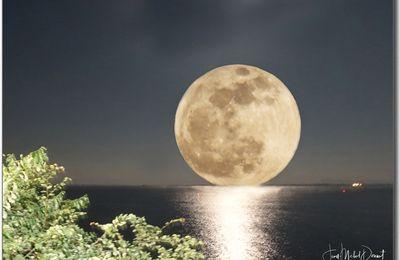 Du 30.11. au 01.12. variations autour de la pleine lune