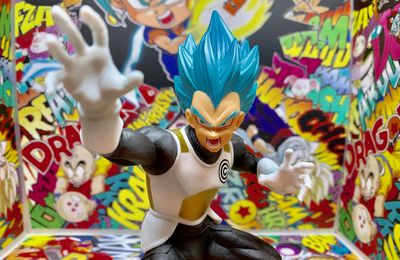 Super Dragon Ball Heroes - Vegeta Super Saiyan Blue Vol.2