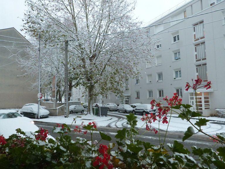 Photos prises après la chute de neige du 07 décembre 2012.