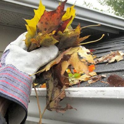 Professional Gutter Cleaning Service Vs. DIY Tricks: Which One Is A Better Option?