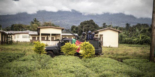 Massacre de Ngarbuh au Cameroun : exaction, bavure ou manipulation ?