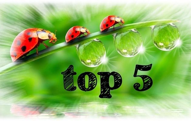 Top 5 - Avril 2018