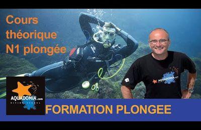 Partagez ! Formation n1 plongée : théorie du niveau 1 en 20 minutes !