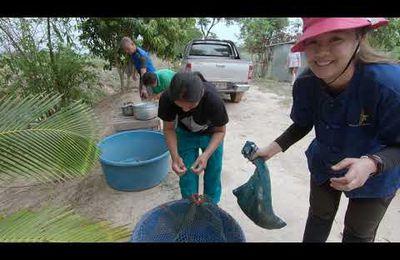 La pêche en Issan