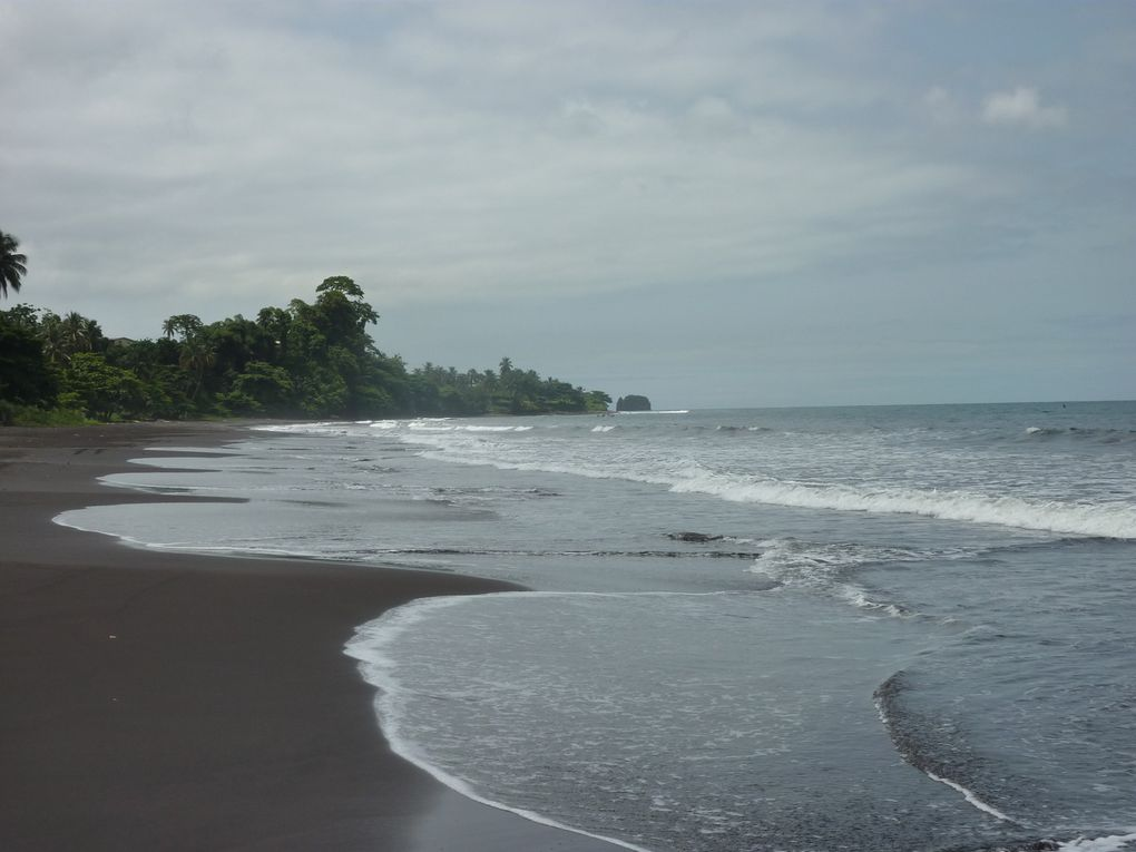 Album - 09. Lagos---Yaoundé