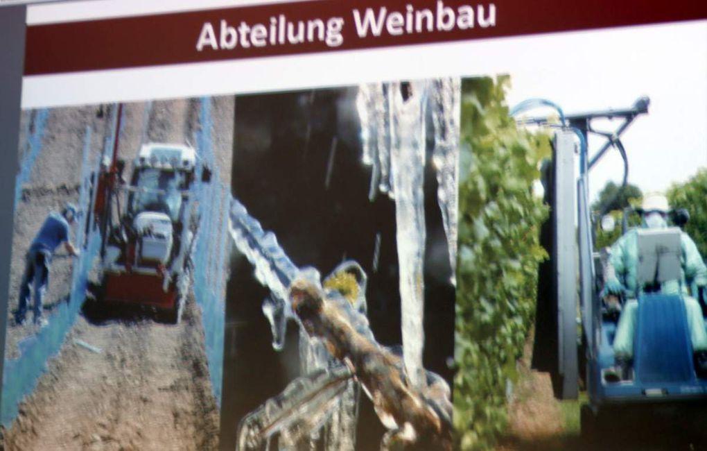 An der LWG werden, einzigartig in Deutschland, gebündelt in einer Einrichtung wichtige Belange des Weinbaus und der Weinwirtschaft in Bayern bearbeitet. Neben der angewandten Forschung, der Beratung der Weinbaubetriebe, der Förderung und Lehre, sind dies die Berufsausbildung, der Vollzug des Weinrechts und in Verbindung mit dem Weintourismus die Entwicklung des ländlichen Raums.