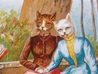 Les chats du Jardin de Frescati