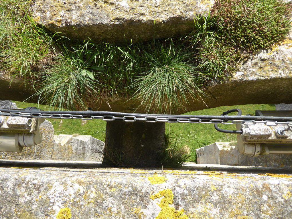 Le château de Druyes les Belles Fontaines