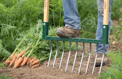 Bien préparer son sol potager à l'automne - Le Potager d'Olivier