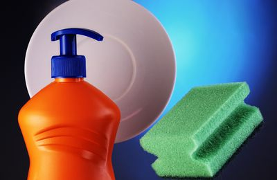 How to Make Dish Soap For Fleas Part II