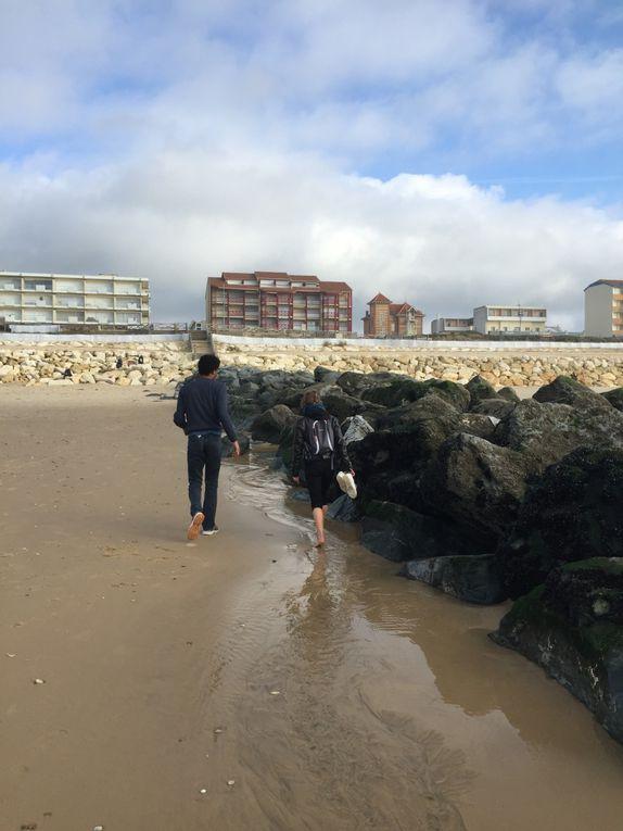 poisson baliste remis à l 'eau, moules accrochées à leurs rochers: on en fait des découvertes locales :-)