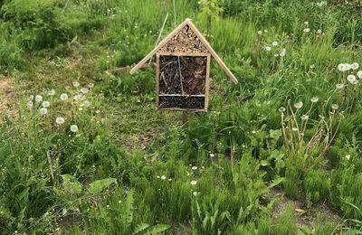 À vos marteaux: construction d'un hôtel à insectes