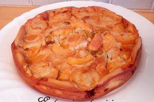 Tôt-Fait aux mirabelles et abricots