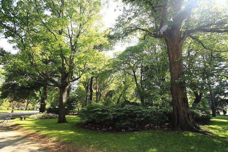 Album - Jardin des plantes de Toulouse