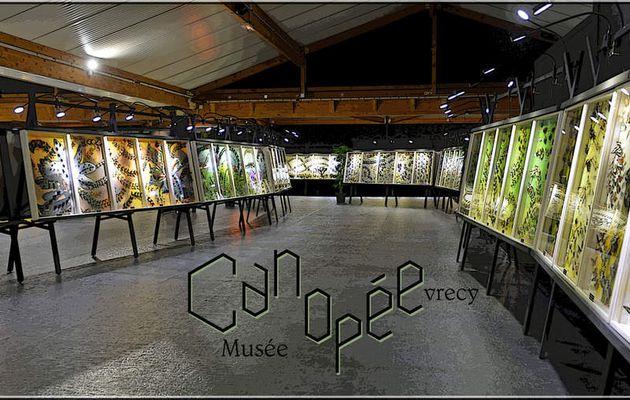 VISITE Musées Suisse normande FALAISE Canopée expo internationale Papillons Araignées