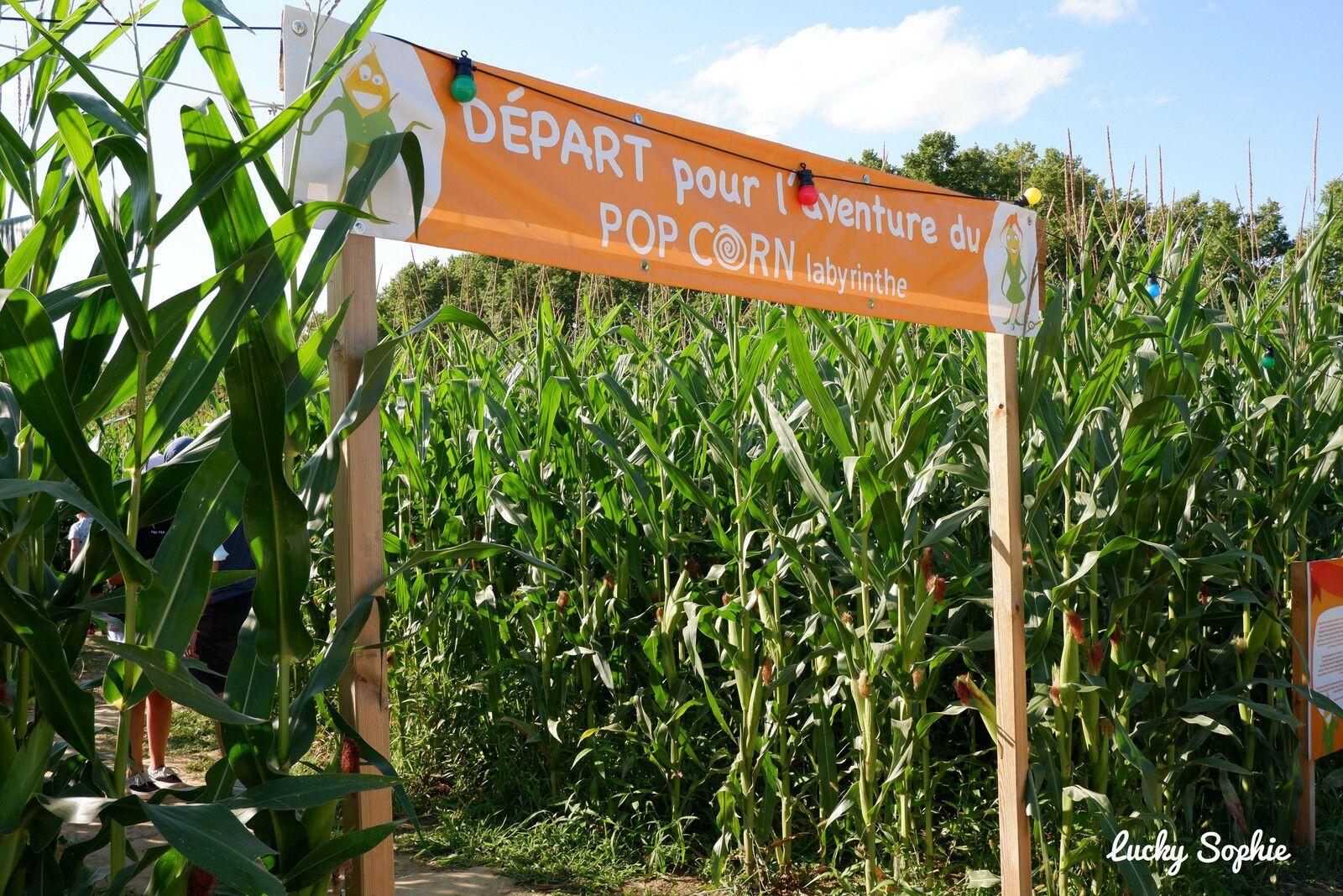 Cette année, découverte pour nous du Pop corn labyrinthe de maïs à Toulouse !