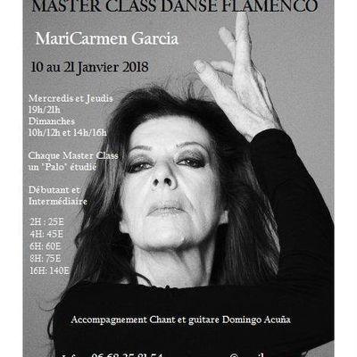 Master Class flamenco janvier 2018