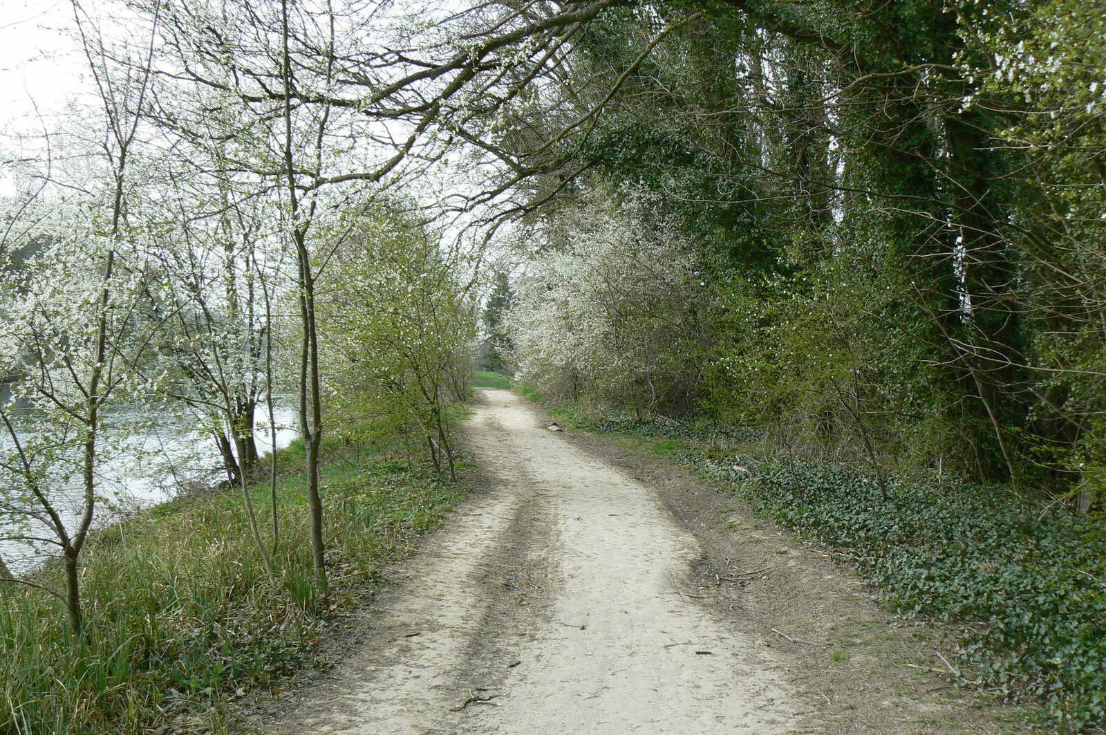Promenade au bord du canal de Chalifert