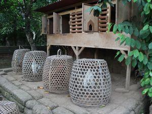 BALI : des temples et des rizières 2 …