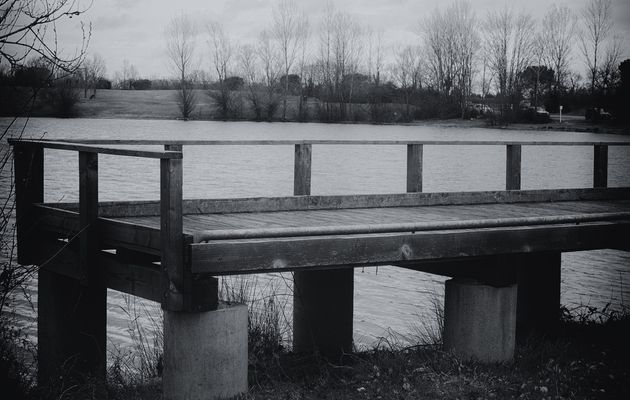 Les solitudes II