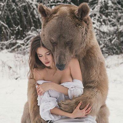 L'ours pose sa patte
