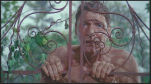 The Swimmer, Frank Perry