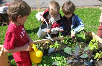 "Formation ""Jardins éducatifs"""
