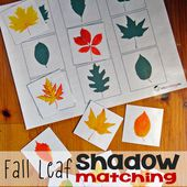 Fall Leaf Shadow Matching